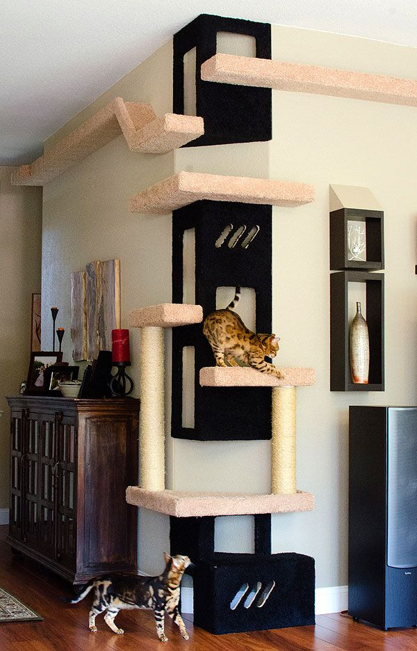 Beautiful corner cat tree