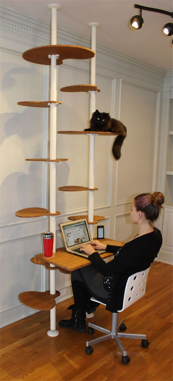 Cat tree and your working desk in one