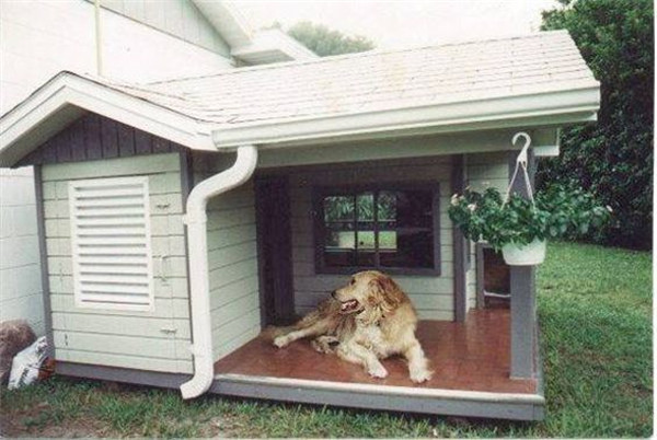 dog house decoration ideas