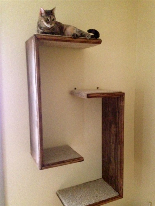Simple cat tree on the wall