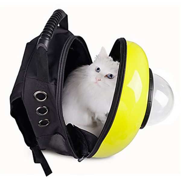 Image Result For Dog Cat Carrier