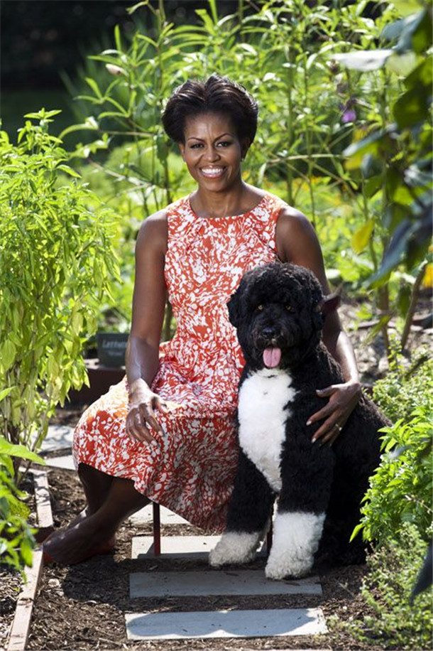 First Lady Michelle Obama poses for a portrait with the family dog, Bo, for a garden book- summer photo shoot, in the White House Kitchen Garden