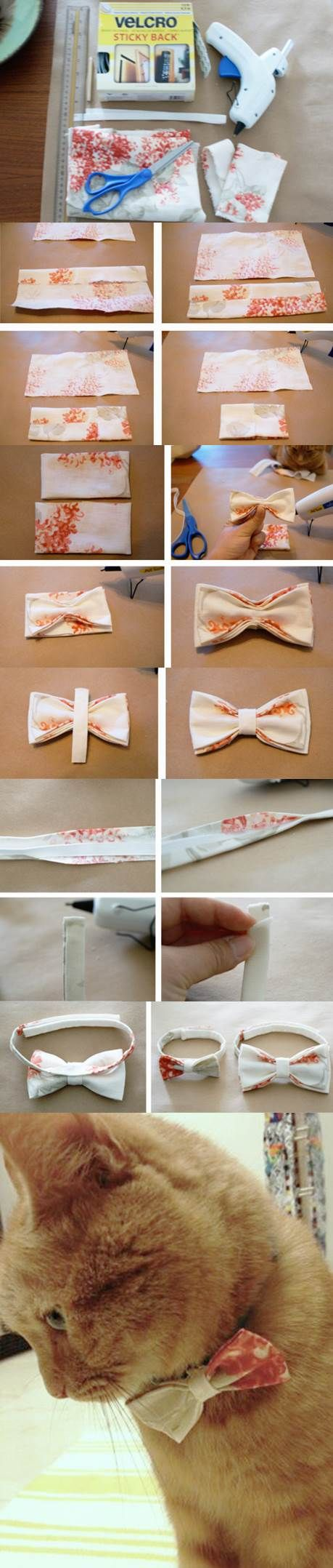 Diy No Sew Bow Tie For Dogs