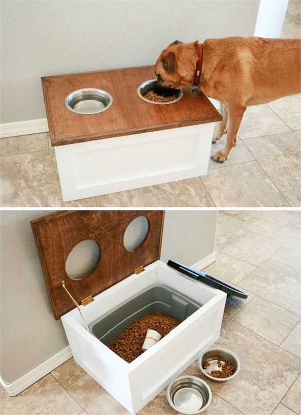 How to Make a Perfect Living Space for Pets