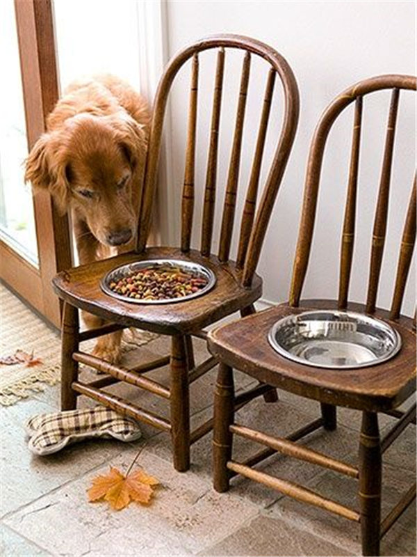 Old Chairs Into Dog Feeding Station