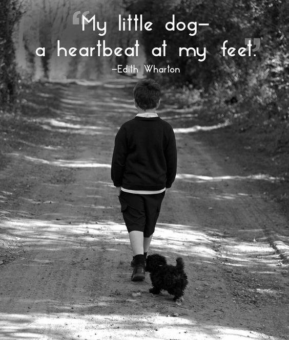 #14 Quotes That Will Make You Want To Hug Your Pet
