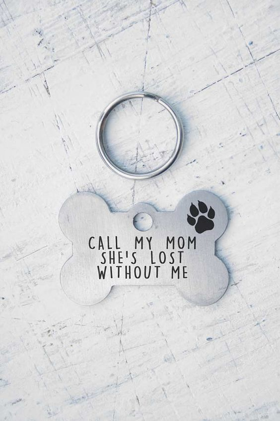 Customized Pet ID Tag - Name Tags