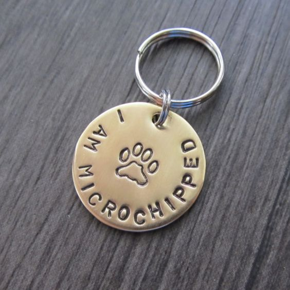 Dog Tag is a must have for your darling fur baby if your pup is microchipped