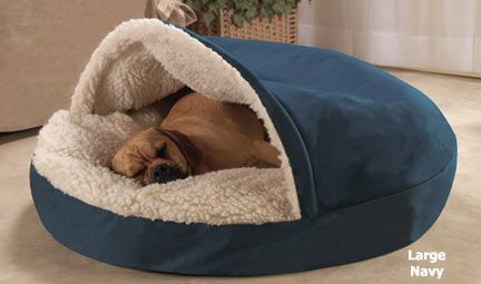 Best Dog Bed Ever