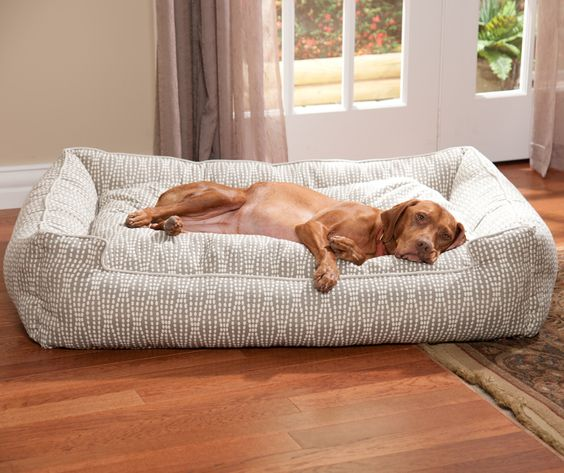 Stylish and Cozy Dog Beds Ideas You and Your Dogs Will Love