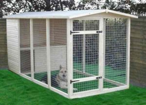 20-best-outdoor-dog-kennel-ideas-1