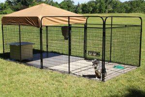 20-best-outdoor-dog-kennel-ideas-12