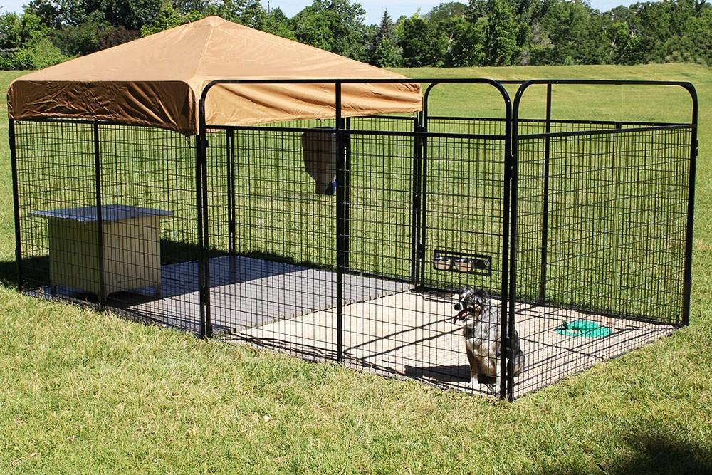 20 Best Outdoor Dog Kennel Ideas 12