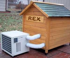 20-best-outdoor-dog-kennel-ideas-19