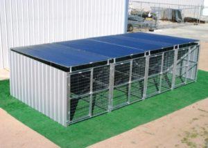 20-best-outdoor-dog-kennel-ideas-5