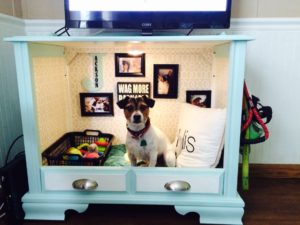 dog-bed-ideas-for-your-furry-friend-1