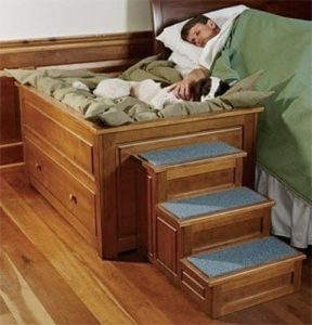 dog-bed-ideas-for-your-furry-friend-12