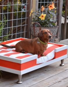 dog-bed-ideas-for-your-furry-friend-14