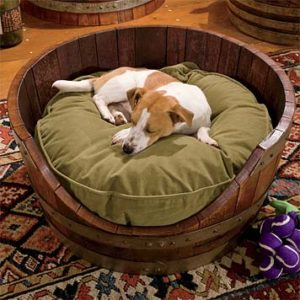 dog-bed-ideas-for-your-furry-friend-17