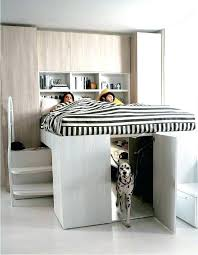 dog-bed-ideas-for-your-furry-friend-18