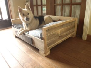 dog-bed-ideas-for-your-furry-friend-2