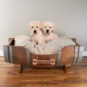 dog-bed-ideas-for-your-furry-friend-25