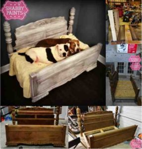 dog-bed-ideas-for-your-furry-friend-6