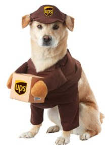 halloween-dog-costume-ideas_3