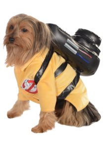 halloween-dog-costume-ideas_5
