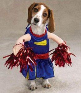 halloween-dog-costume-ideas_6