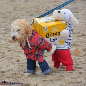 halloween-dog-costume-ideas_8