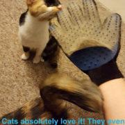 pet-grooming-glove_5
