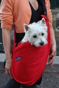 airline-approved-pet-carrier_017