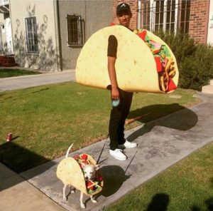 halloween-costumes-for-dogs_001