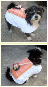halloween-costumes-for-dogs_008