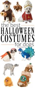 halloween-costumes-for-dogs_009