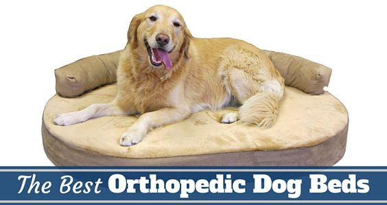 orthopedic-dog-bed_033