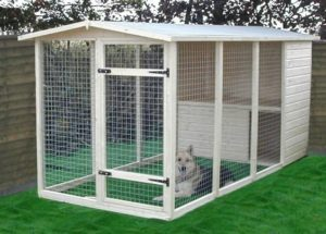 outdoor-dog-kennels_011
