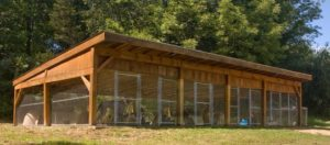 outdoor-dog-kennels_025