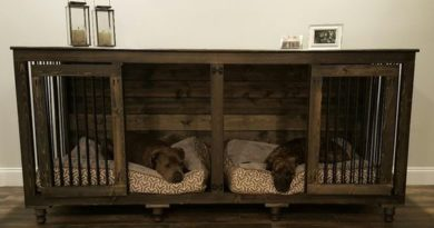 WOW….100+ Best DOG CRATE Idea We Have Ever Seen!
