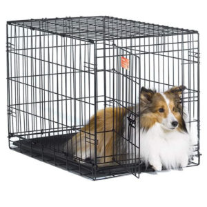 dog-crates-01