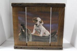 dog-crates-10