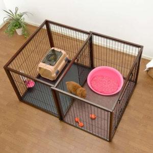 dog-crates-43