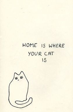 Quotes Only Cat Owners Will Understand
