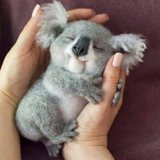 teeny-baby-animals-you-you-will-love-32