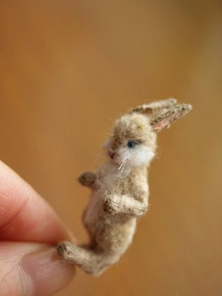 super-cute-tiny-bunnies-that-will-melt-your-heart-1