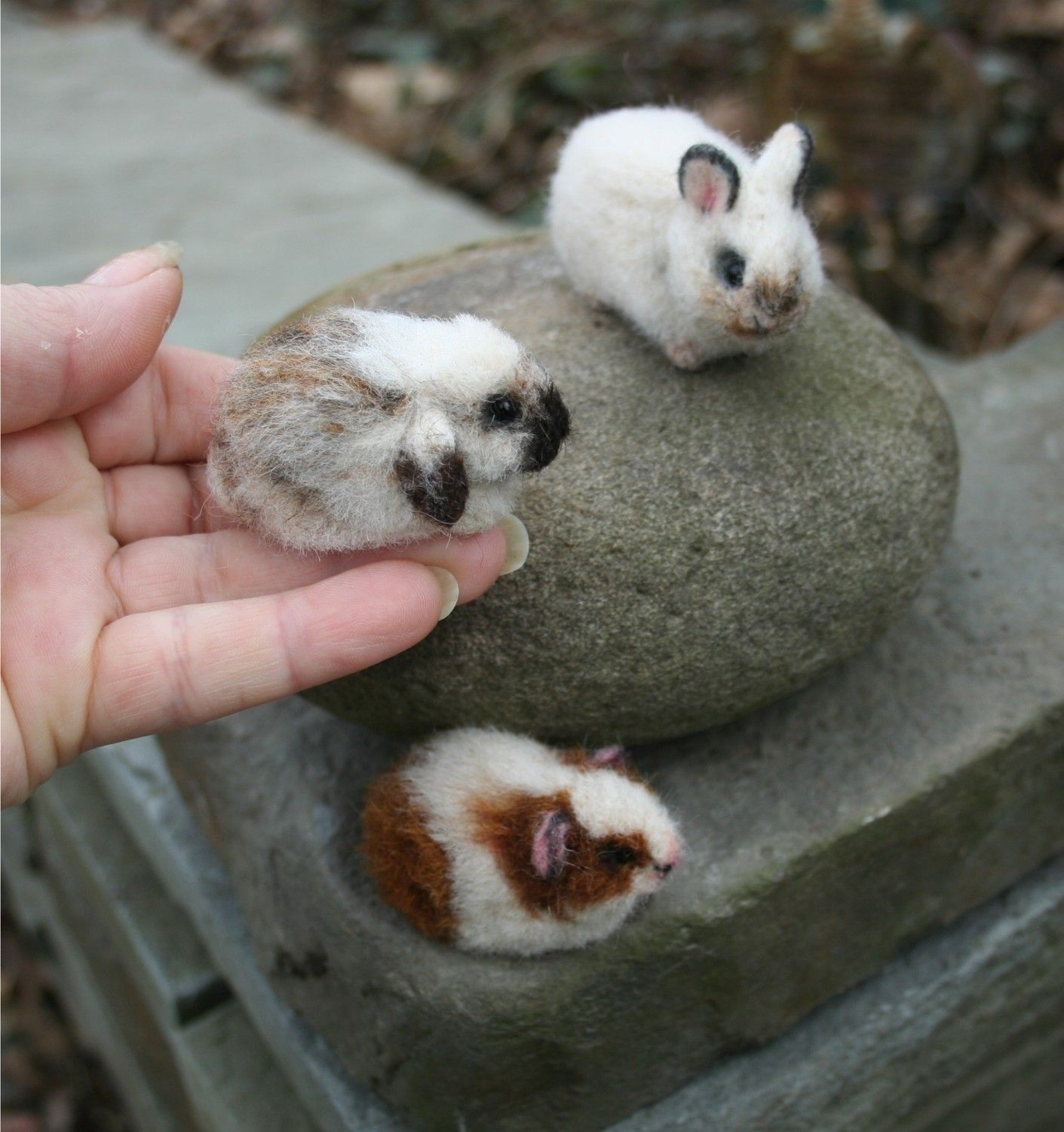 super-cute-tiny-bunnies-that-will-melt-your-heart-19